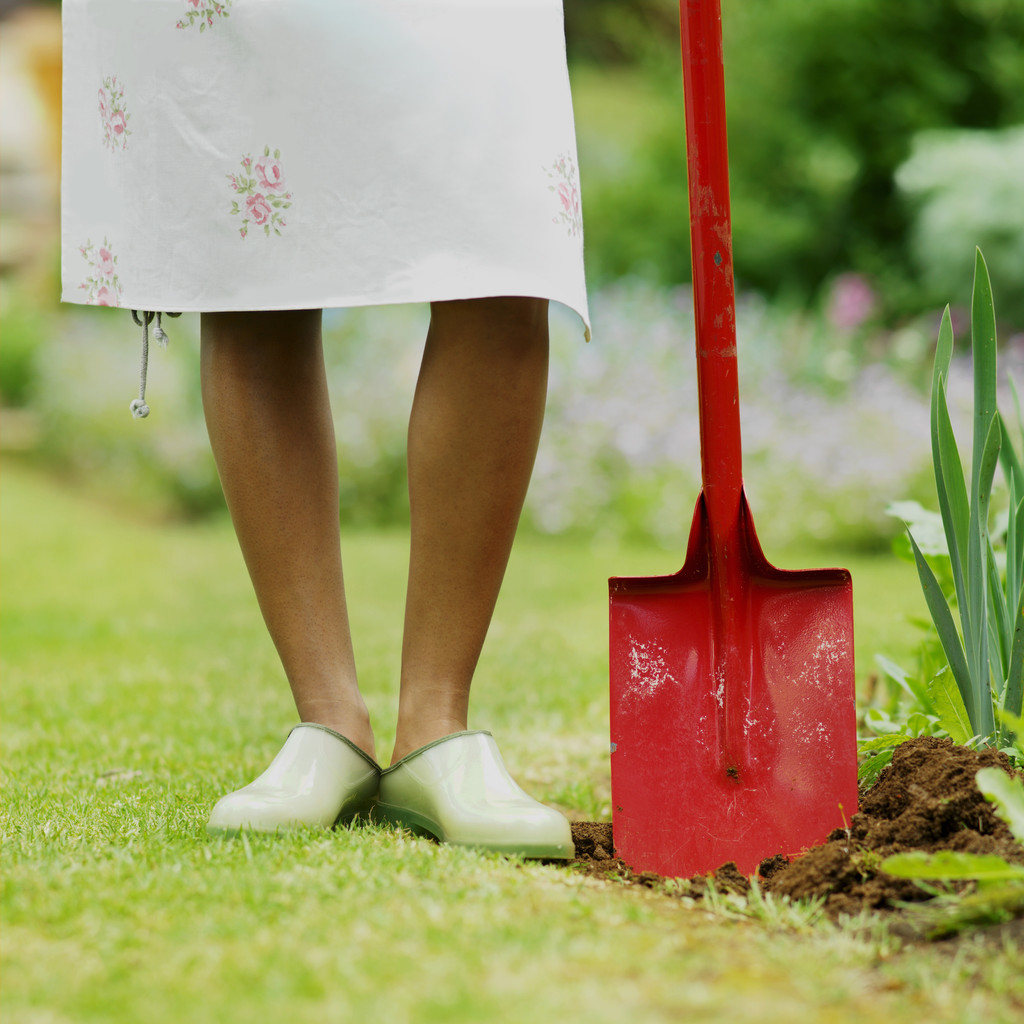 Go Green: Five S's for the 2011 Spring Vegetable Garden