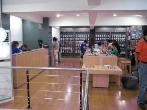 fake apple store
