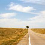 lonely road - Entrepreneurship