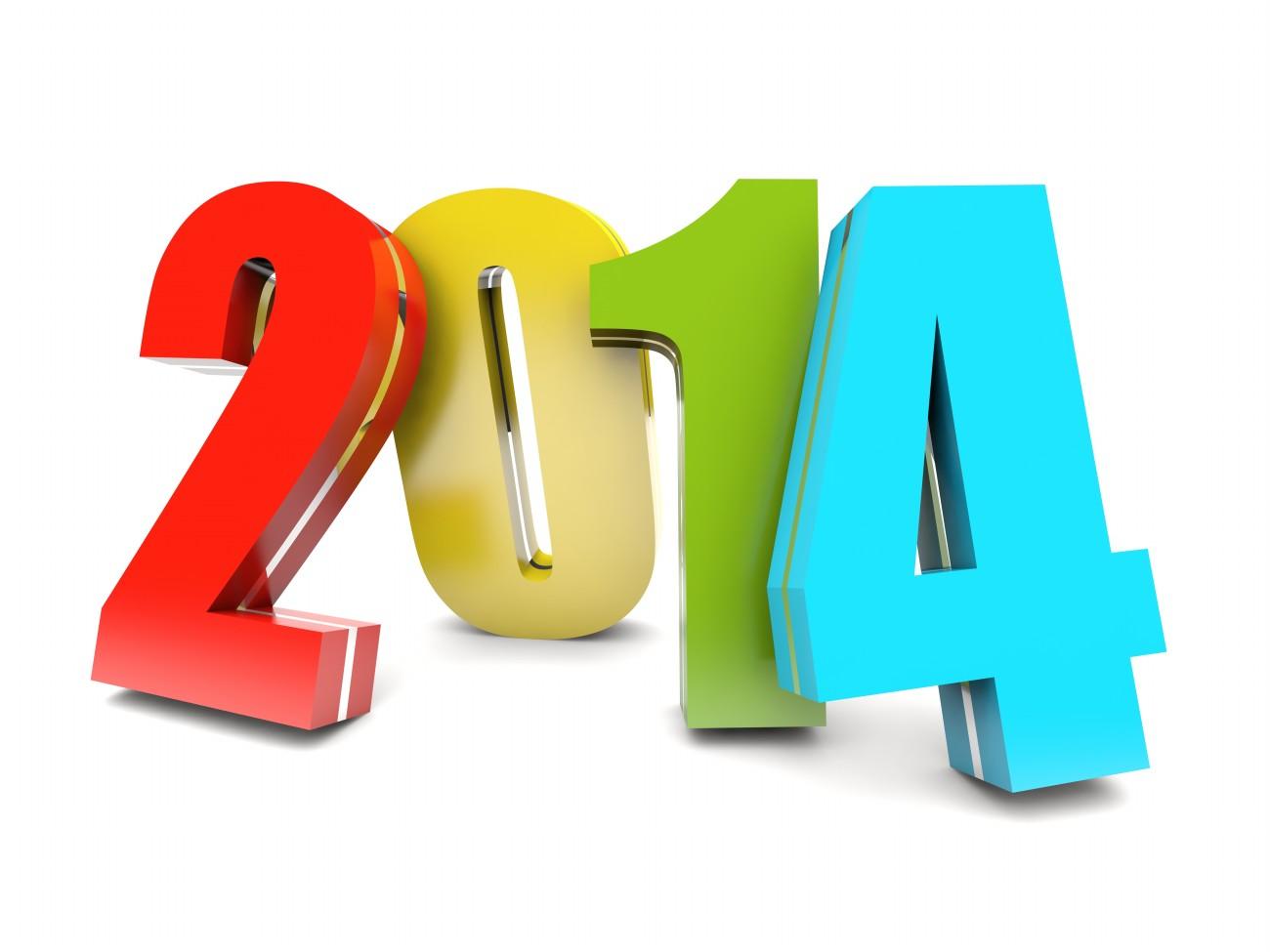2013 Retrospective and January Debt Check