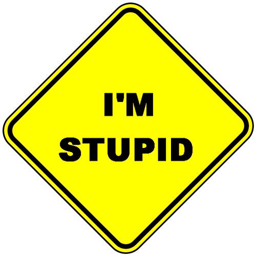 I am stupid
